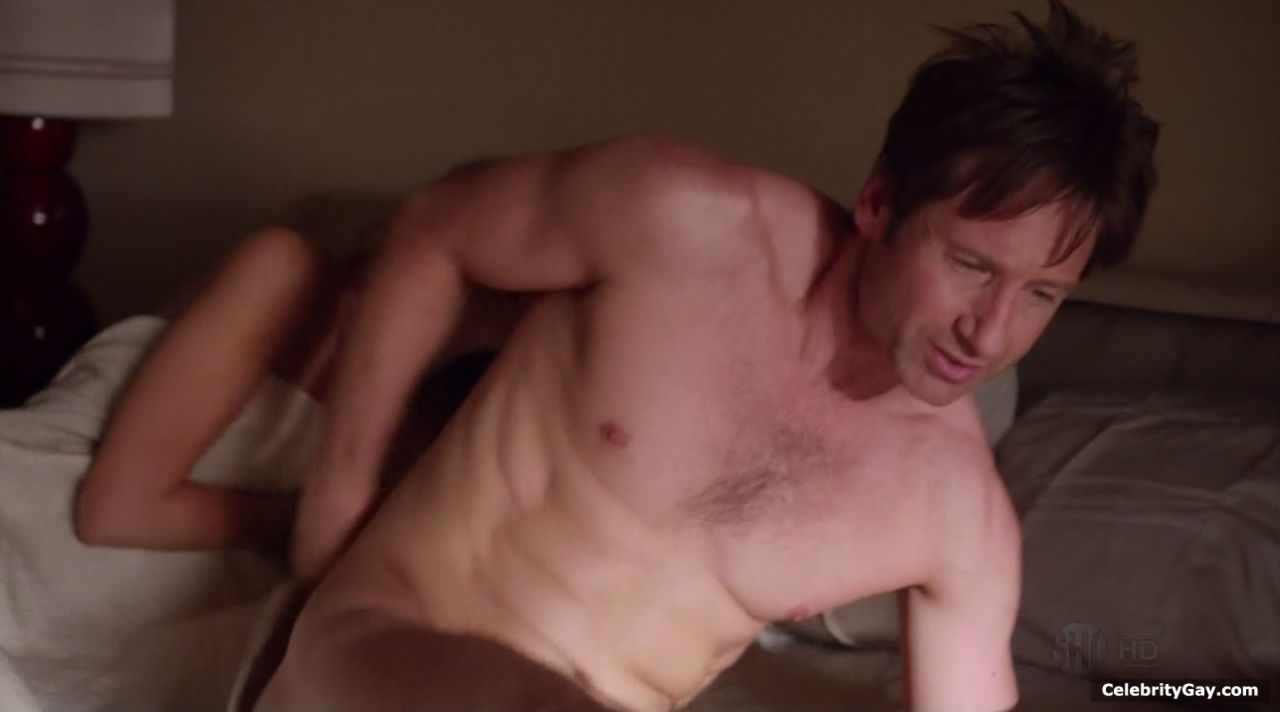 Mulder made david duchovny an author