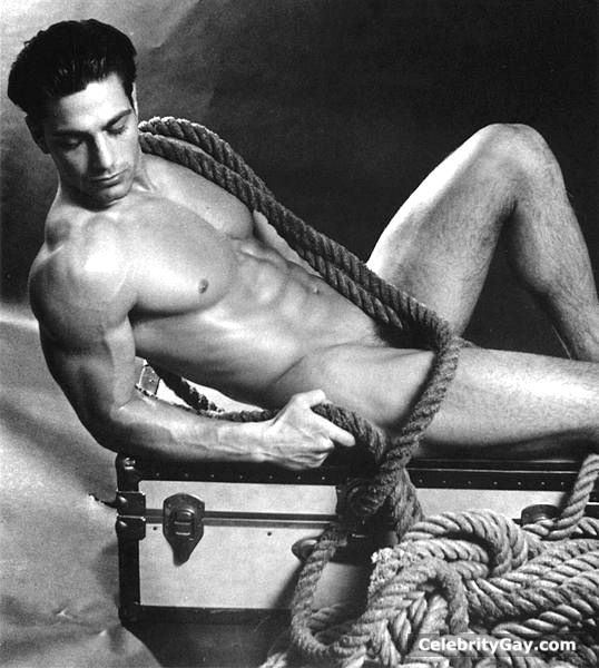 free pictures of nude male celebrities  488134