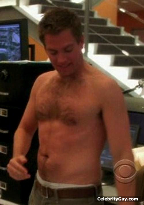 Michael weatherly naked — photo 11